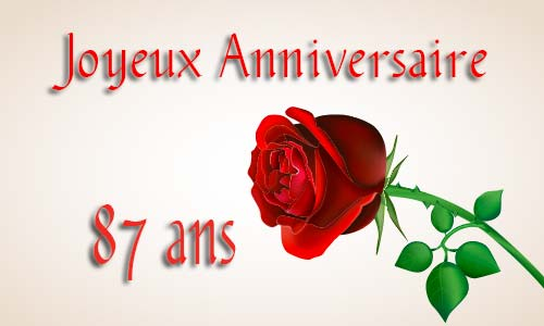 carte-anniversaire-amour-87-ans-rose-rouge.jpg