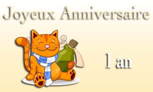 carte-anniversaire-humour-1-an-chat-bouteille.jpg