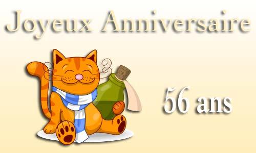 carte-anniversaire-humour-56-ans-chat-bouteille.jpg